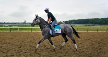The Belmont Stakes on June 5th holds a special place in the hearts of New York sports bettors and horse racing fans.